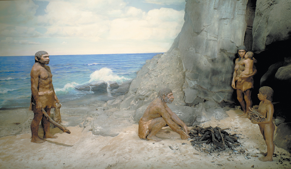 A diorama of a Neanderthal family cooking mussels near the Devil's Tower rock shelter at Gibraltar, on the Mediterranean Sea; from the Field Museum, Chicago, early 1970s