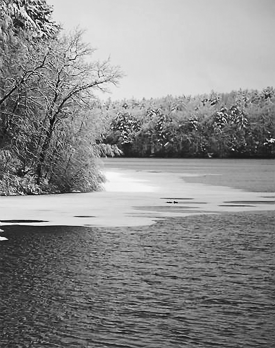 Ice on Walden Pond; from Richard Primack's Walden Warming