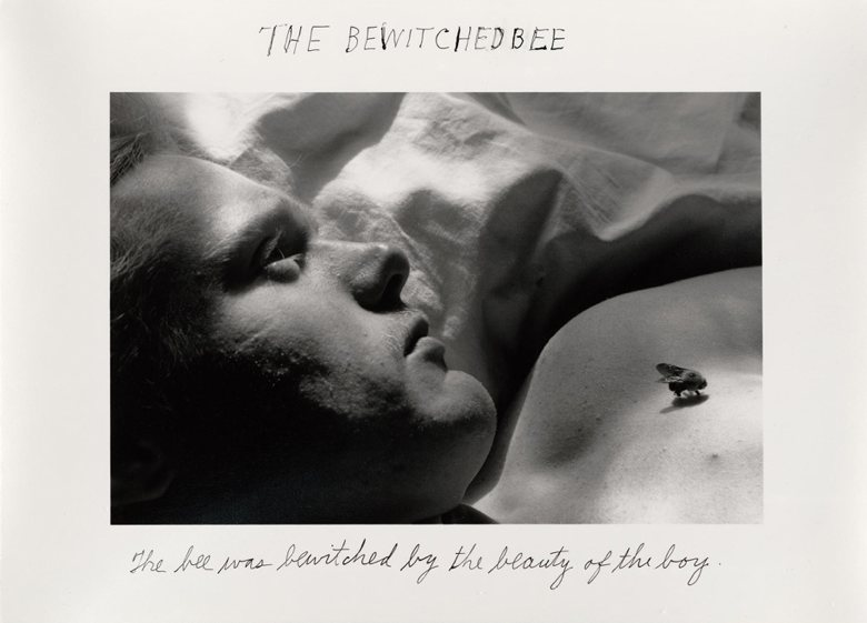 Duane Michals: The Bewitched Bee.jpg