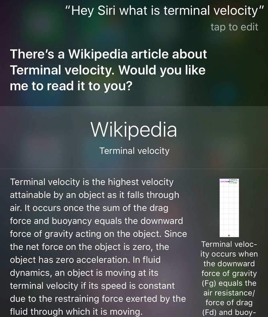 Gleick Siri.jpg