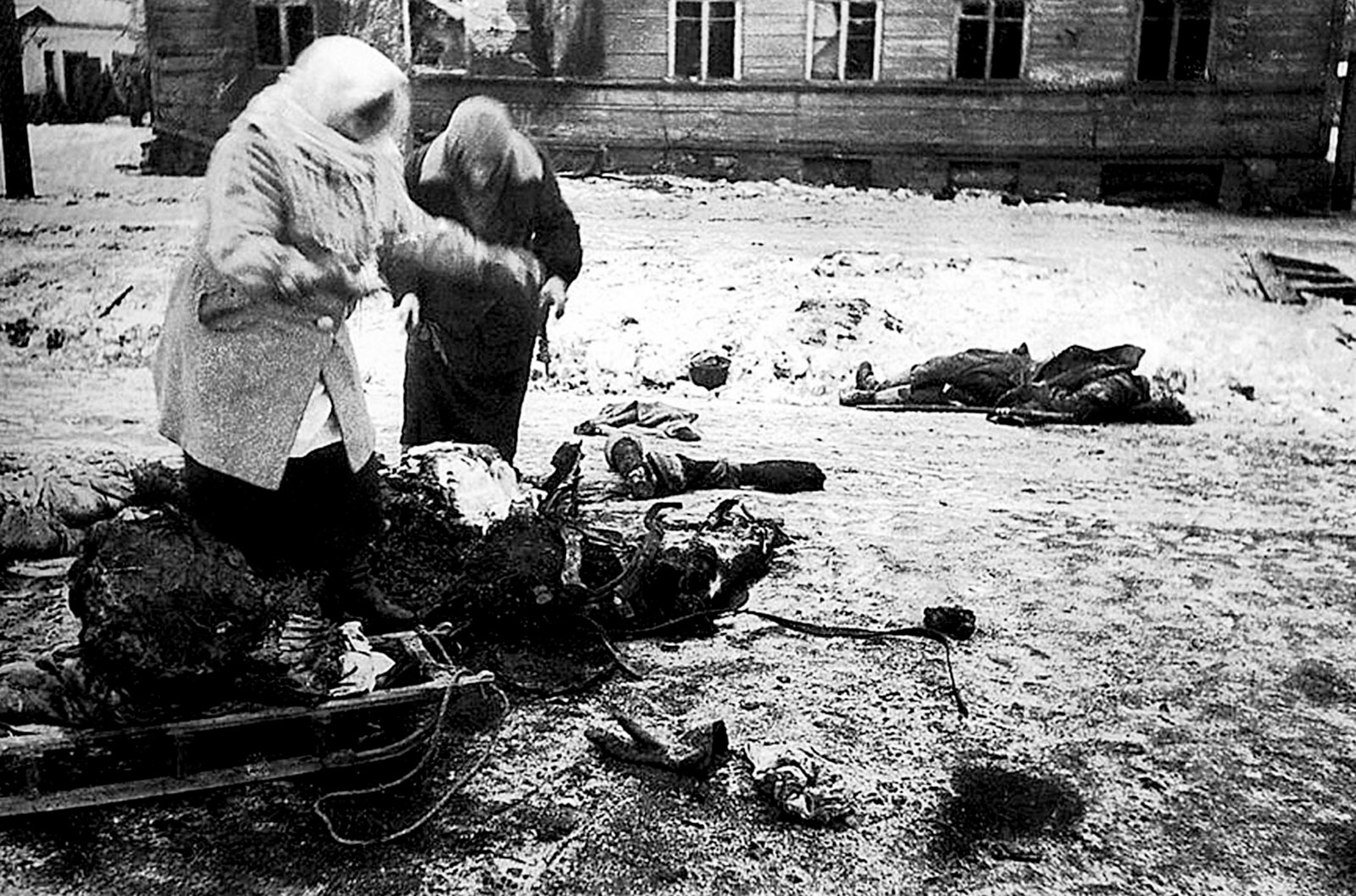 Two women collecting the remains of a dead horse for food, Leningrad, 1941