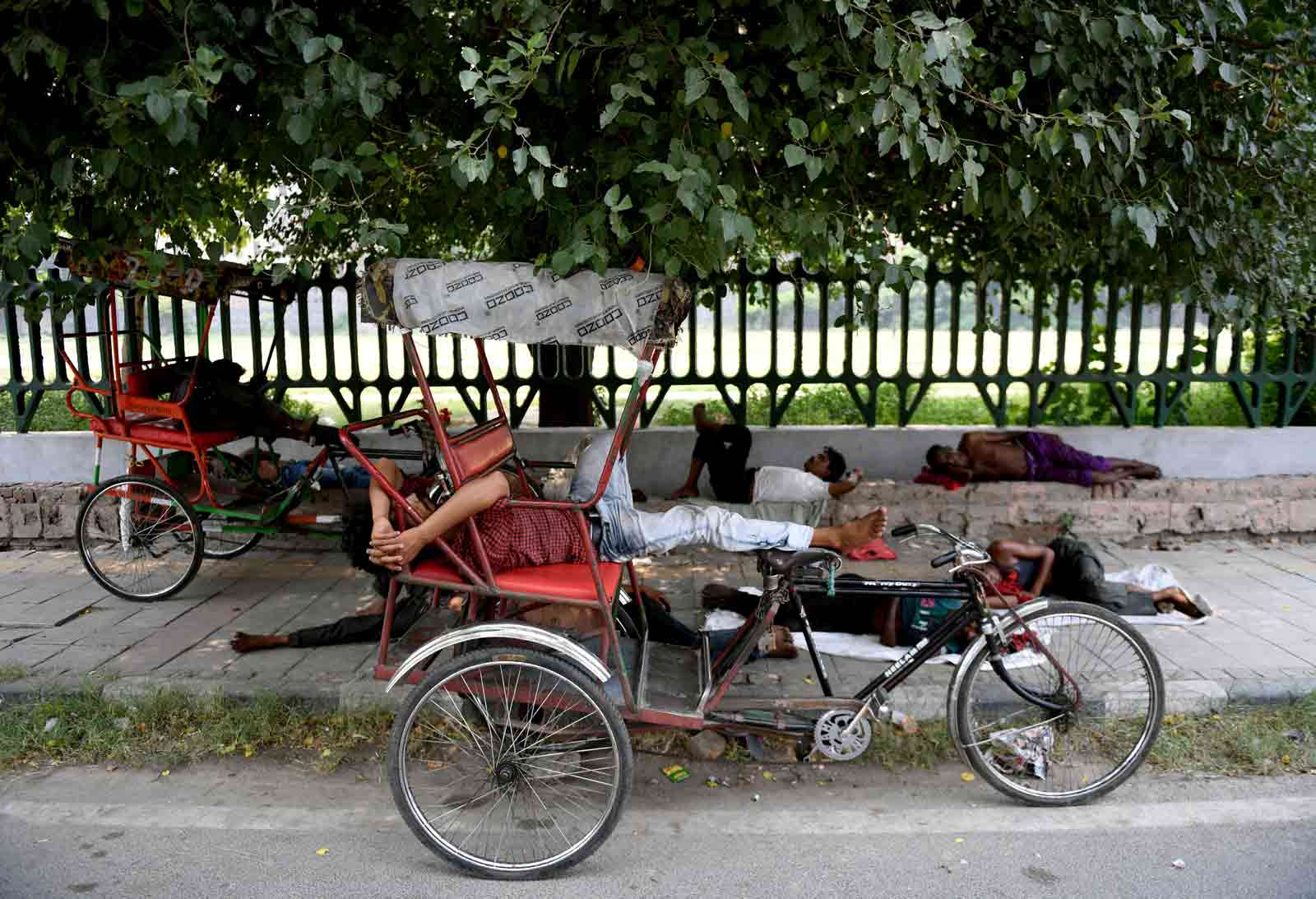 Men napping under a tree during a hot summer day in New Delhi, July 2, 2019