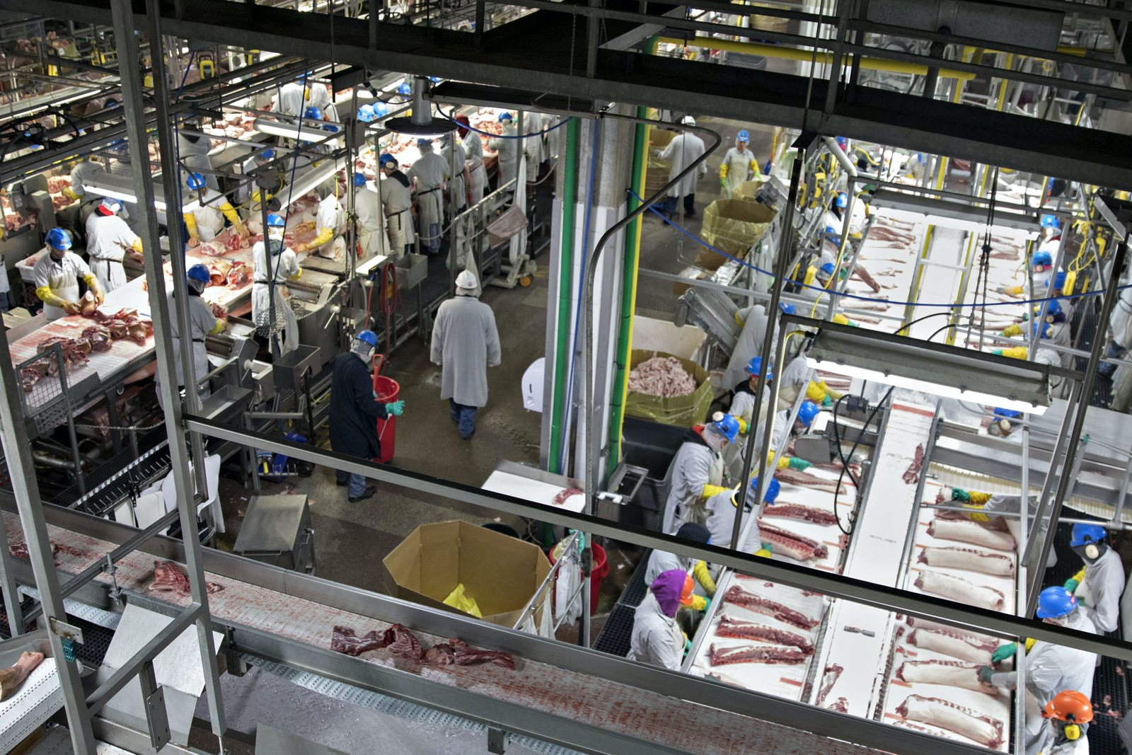 Workers processing pork